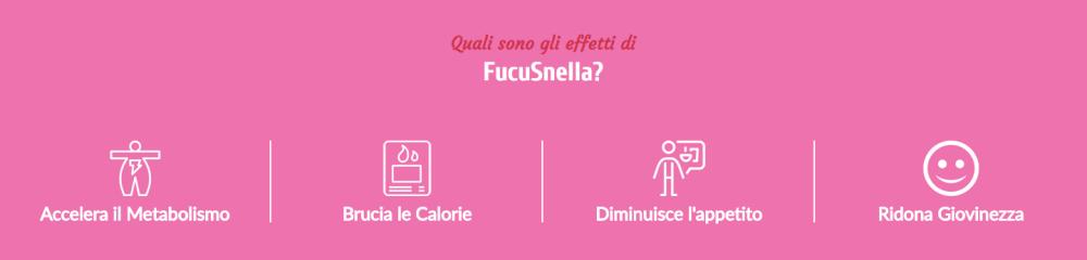 fucusnella 2